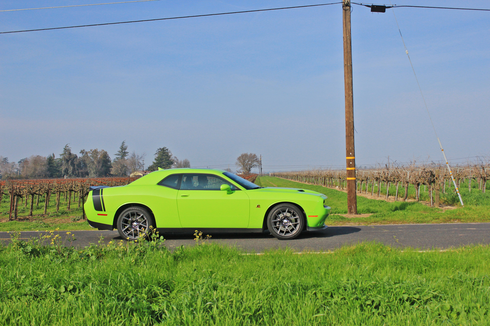 What Does Rt Stand For Dodge >> 2015 Dodge Challenger R/T Scat Pack – Carfanatics Blog